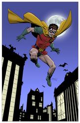 Robin - Color Print