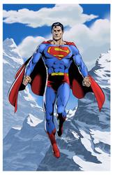 Superman - Color Print