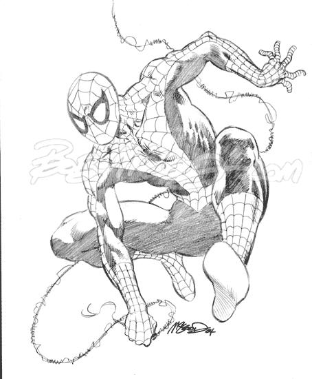 """Spider-Man 2004 9"""" x 12"""""""