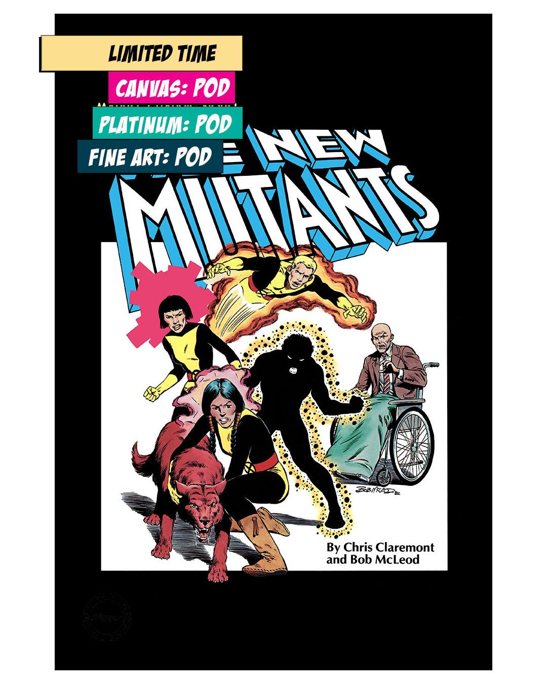 THE NEW MUTANTS: GRAPHIC NOVEL #4